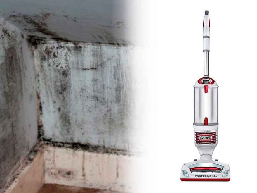 Best HEPA Vacuum for Mold