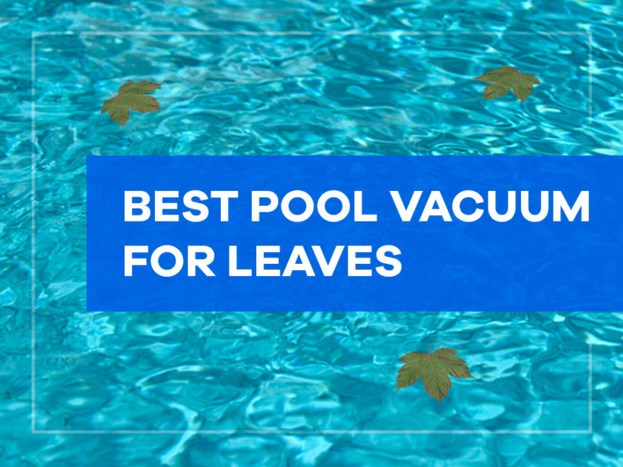 Best Pool Vacuum for Leaves